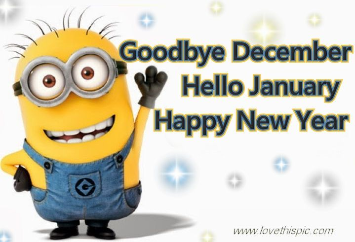 Happy New Year Funny Bye December Minion