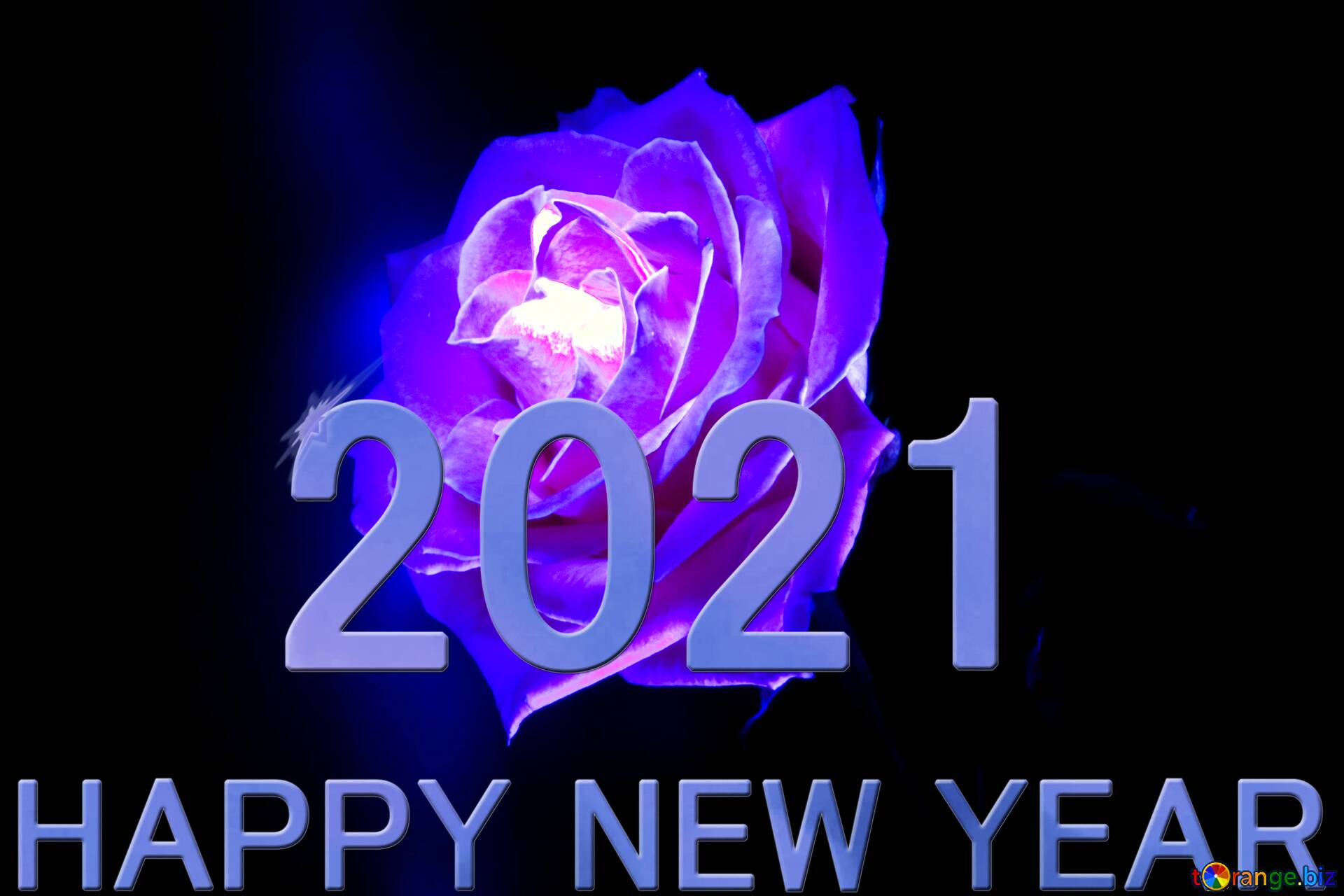 Year 2021 New Happy Rose Blue Cards