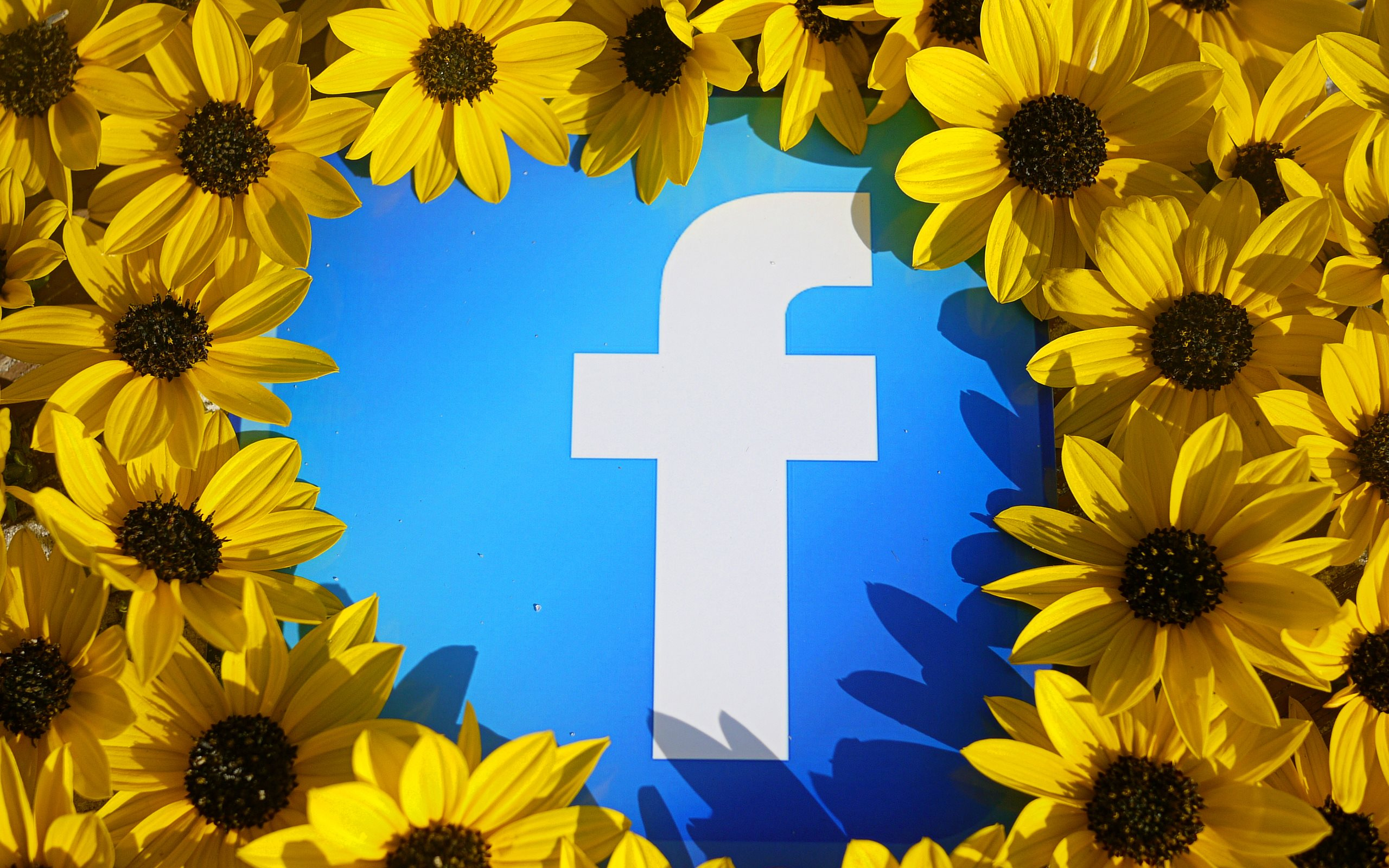 Facebook Wallpapers Backgrounds Hd 08